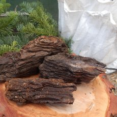 Seasoned Red Fir Bark